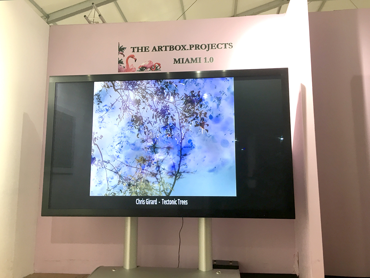Tectonic Trees is displayed during Art Spectrum and Red Dot Miami during Art Basel.