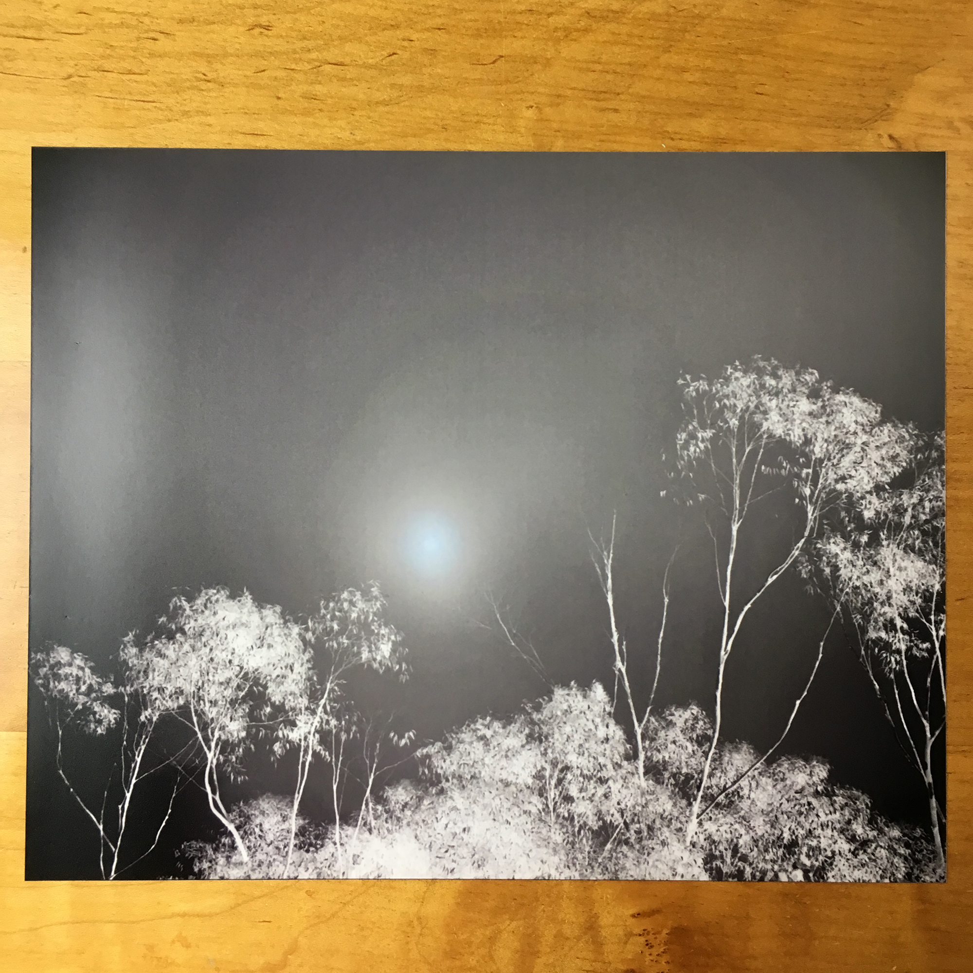 Ice Fog, Photograph on 8×10″ Matte Paper